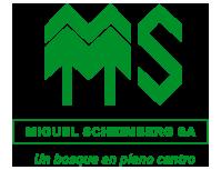Miguel Scheimberg Web